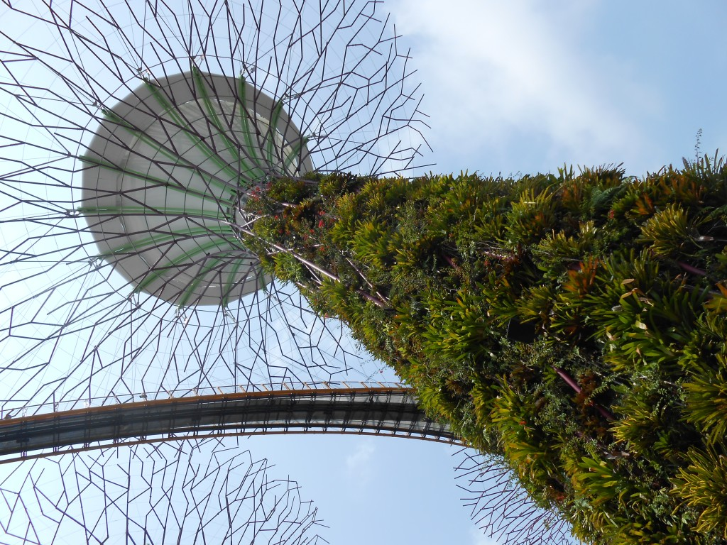 Gardens By The Bay Supertree with Plants