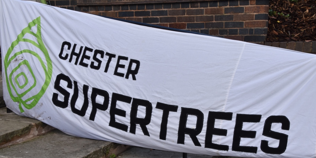Supertrees Banner