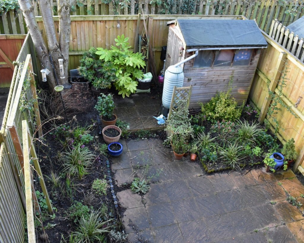 Garden Overhead February 2020