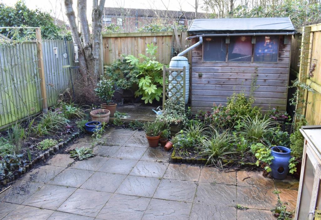 Garden February 2020