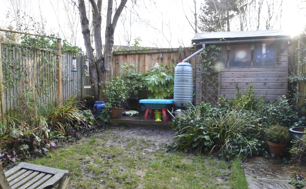 Garden from Door